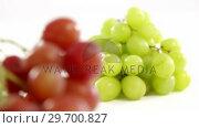 Купить «Close-up of green and red bunches of grapes», видеоролик № 29700827, снято 19 декабря 2016 г. (c) Wavebreak Media / Фотобанк Лори