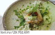 Купить «Delicious meal on plate», видеоролик № 29702691, снято 13 марта 2017 г. (c) Wavebreak Media / Фотобанк Лори