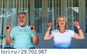 Купить «Senior couple exercising with dumbbells», видеоролик № 29702987, снято 24 марта 2017 г. (c) Wavebreak Media / Фотобанк Лори