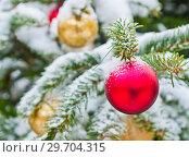 Купить «Новогодняя елка усыпанная белым снегом с красными и желтыми шарами. Москва. Россия», фото № 29704315, снято 3 января 2019 г. (c) E. O. / Фотобанк Лори
