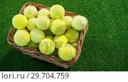 Купить «Tennis balls in wicker basket at studio 4k», видеоролик № 29704759, снято 6 апреля 2017 г. (c) Wavebreak Media / Фотобанк Лори