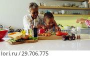 Купить «Grandmother assisting granddaughter to chop vegetables in kitchen 4k», видеоролик № 29706775, снято 24 марта 2017 г. (c) Wavebreak Media / Фотобанк Лори