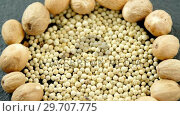 Купить «White peppers surrounded with nutmegs 4k», видеоролик № 29707775, снято 5 июня 2017 г. (c) Wavebreak Media / Фотобанк Лори