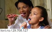 Купить «Grandmother and granddaughter brushing together in bathroom 4k», видеоролик № 29708127, снято 15 марта 2017 г. (c) Wavebreak Media / Фотобанк Лори