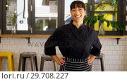 Купить «Portrait of beautiful waitress standing with hands on hip 4k», видеоролик № 29708227, снято 21 мая 2017 г. (c) Wavebreak Media / Фотобанк Лори