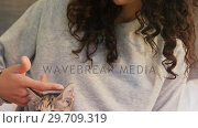 Купить «Young woman sitting on bed stroking her tabby cat in the bedroom 4K 4k», видеоролик № 29709319, снято 31 мая 2017 г. (c) Wavebreak Media / Фотобанк Лори