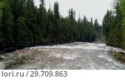 Купить «River flowing through green forest 4k», видеоролик № 29709863, снято 3 августа 2017 г. (c) Wavebreak Media / Фотобанк Лори