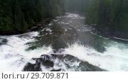 Купить «River flowing through green forest 4k», видеоролик № 29709871, снято 3 августа 2017 г. (c) Wavebreak Media / Фотобанк Лори