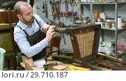 Купить «Professional furniture restorer in process of renovation vintage armchair in workshop», видеоролик № 29710187, снято 29 ноября 2018 г. (c) Яков Филимонов / Фотобанк Лори