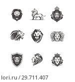 Купить «Graphic illustrations of Lions», иллюстрация № 29711407 (c) Миронова Анастасия / Фотобанк Лори