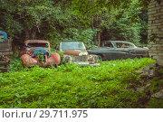 Купить «Несколько ржавых ретро-автомобилей, предназначенных для реставрации, стоят во дворе. Село Пасанаури, Грузия.», эксклюзивное фото № 29711975, снято 17 января 2019 г. (c) Сергей Цепек / Фотобанк Лори