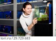 Купить «Girl looking at young fishes in aquarium», фото № 29729683, снято 17 февраля 2017 г. (c) Яков Филимонов / Фотобанк Лори