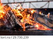 Купить «Горящие дрова в мангале», эксклюзивное фото № 29730239, снято 1 января 2019 г. (c) Игорь Низов / Фотобанк Лори