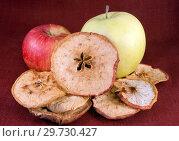 Купить «Сушеные и свежие яблоки», фото № 29730427, снято 16 января 2019 г. (c) Румянцева Наталия / Фотобанк Лори