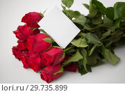 close up of red roses and letter or note. Стоковое фото, фотограф Syda Productions / Фотобанк Лори