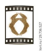 Купить «Wheat ears logo. Mock up for you design. 3d render. Film strip.», фото № 29736527, снято 17 сентября 2019 г. (c) Guru3d / Фотобанк Лори