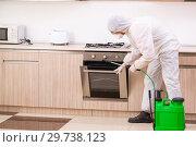 Купить «Professional contractor doing pest control at kitchen», фото № 29738123, снято 29 октября 2018 г. (c) Elnur / Фотобанк Лори