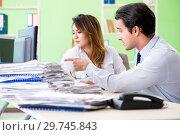 Купить «Two colleagues working in the office», фото № 29745843, снято 11 июня 2018 г. (c) Elnur / Фотобанк Лори