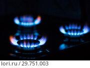 Купить «Blue gas flame», фото № 29751003, снято 21 августа 2018 г. (c) Икан Леонид / Фотобанк Лори