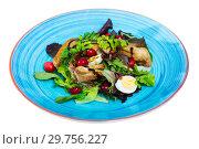 Купить «Salad of quail with greens, cranberries and honey-ginger sauce», фото № 29756227, снято 25 апреля 2019 г. (c) Яков Филимонов / Фотобанк Лори