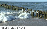 Купить «The waves of the Baltic sea break on an old wooden breakwater. Video Full HD», видеоролик № 29757043, снято 28 сентября 2018 г. (c) Сергей Трофименко / Фотобанк Лори