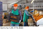 Купить «Man carrying box with mandarins in storage», фото № 29773843, снято 15 декабря 2018 г. (c) Яков Филимонов / Фотобанк Лори