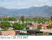 Купить «Mendoza in La Rioja valley at foot of Andes», фото № 29773987, снято 12 февраля 2017 г. (c) Яков Филимонов / Фотобанк Лори
