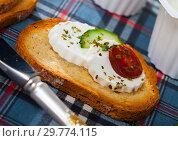 Купить «Sandwich with green cheese», фото № 29774115, снято 19 июня 2019 г. (c) Яков Филимонов / Фотобанк Лори