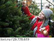 Купить «Young woman selecting Christmas tree», фото № 29778619, снято 1 декабря 2018 г. (c) Яков Филимонов / Фотобанк Лори