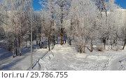 Купить «Snow covered city park in winter and Moscow, Russia», видеоролик № 29786755, снято 26 мая 2019 г. (c) Володина Ольга / Фотобанк Лори
