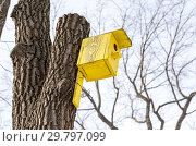 Купить «Wooden yellow birdhouse on a high tree in winter park», фото № 29797099, снято 18 февраля 2018 г. (c) FotograFF / Фотобанк Лори