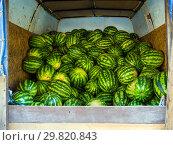 Купить «Арбузы нового урожая лежат в кузове фургона», фото № 29820843, снято 19 августа 2018 г. (c) Вячеслав Палес / Фотобанк Лори