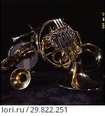 Купить «Музыкальные инструменты военных музыкантов», фото № 29822251, снято 21 января 2020 г. (c) Борис Кавашкин / Фотобанк Лори