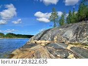 Купить «Karelian landscape - rocks, pine trees, sky and water. Bay Chupa, White Sea, Karelia, Russia», фото № 29822635, снято 10 августа 2018 г. (c) Сергей Трофименко / Фотобанк Лори