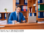 Купить «Young employee working in the office», фото № 29823039, снято 9 августа 2018 г. (c) Elnur / Фотобанк Лори