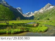 Купить «Mountains in summer», фото № 29830983, снято 4 июля 2014 г. (c) александр жарников / Фотобанк Лори