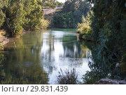 Купить «Jordan river - the place of baptism of Jesus Christ, Israel», фото № 29831439, снято 6 декабря 2015 г. (c) Наталья Волкова / Фотобанк Лори
