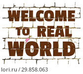 Купить «Welcome To Real World printed on stylized brick wall. Textured inscription for your design. Vector», иллюстрация № 29858063 (c) Dmitry Domashenko / Фотобанк Лори
