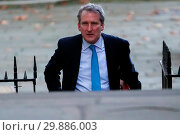 Купить «Ministers attend weekly cabinet meeting in Downing Street. Featuring: Damian Hinds - Secretary of State for Education Where: London, London, United Kingdom When: 16 Jan 2018 Credit: WENN.com», фото № 29886003, снято 16 января 2018 г. (c) age Fotostock / Фотобанк Лори