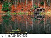 Купить «Old fishing house near the forest pond in the autumn afternoon, beautiful landscape», фото № 29897635, снято 11 ноября 2017 г. (c) Константин Лабунский / Фотобанк Лори