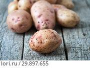 Купить «Raw unpeeled potatoes lying on the wooden boards», фото № 29897655, снято 27 января 2019 г. (c) Георгий Дзюра / Фотобанк Лори