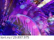 Купить «Trendy colored natural floral pattern of palm leaves in violet», фото № 29897975, снято 23 марта 2018 г. (c) Kira_Yan / Фотобанк Лори