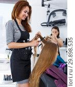 Купить «Hairdresser doing styling of girl», фото № 29898535, снято 26 июня 2018 г. (c) Яков Филимонов / Фотобанк Лори