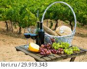 Купить «Red wine with basket», фото № 29919343, снято 25 мая 2019 г. (c) Яков Филимонов / Фотобанк Лори