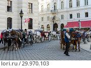 Стоянка конных экипажей (венских фиакров) в историческом центре города, Вена, Австрия (2018 год). Редакционное фото, фотограф Ольга Коцюба / Фотобанк Лори