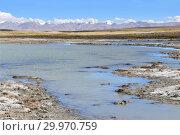 Купить «Великие озера Тибета. Озеро Рулдан (Нак) на Тибетском плато летом. Китай», фото № 29970759, снято 11 июня 2018 г. (c) Овчинникова Ирина / Фотобанк Лори