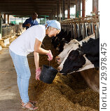 Купить «Man and woman working on dairy farm», фото № 29978475, снято 8 августа 2018 г. (c) Яков Филимонов / Фотобанк Лори