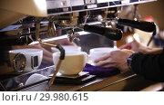 Купить «Barista making coffee. An espresso pouring in two cups», видеоролик № 29980615, снято 18 февраля 2019 г. (c) Константин Шишкин / Фотобанк Лори