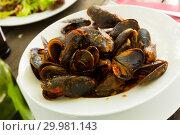 Купить «Mussels with tomato sauce», фото № 29981143, снято 26 марта 2019 г. (c) Яков Филимонов / Фотобанк Лори