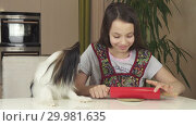 Купить «Teen girl and dog Papillon prepare cookies, rolling dough with rolling pin stock footage video», видеоролик № 29981635, снято 27 декабря 2018 г. (c) Юлия Машкова / Фотобанк Лори